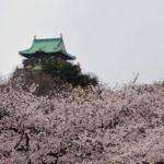 NHKは大阪市役所がたこ焼き屋を営業しているようなもん?