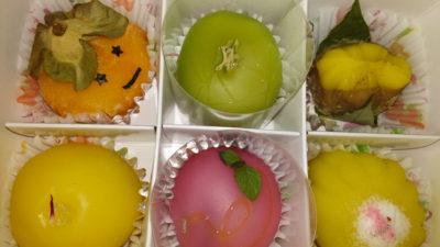 Wagashi Fruit Mochi