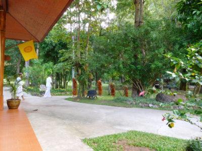 タイ北部の瞑想寺ワットタムウアの歩く瞑想
