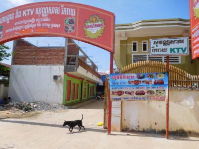 カンボジアのカンポットのKTVと番犬