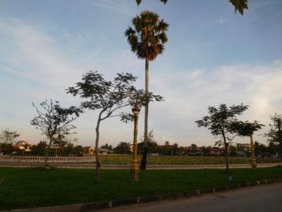 カンボジアのカンポットの蓮池公園