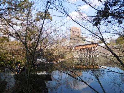 和歌山城からのダイワロイネットホテル和歌山